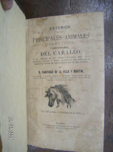 exterior de los principales animales domesticos y el caballo
