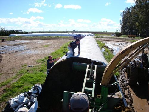extractor de forrajes y granos embolsados
