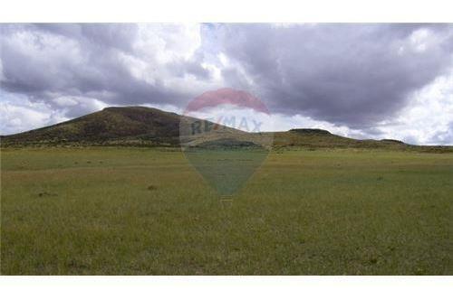 extraordinario campo en malargüe