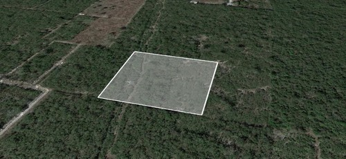 extraordinario terreno en venta en tamanché