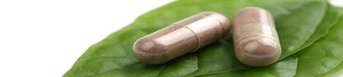 extrato de tribulus 40% saponinas - 96 potes - 60 caps 600mg