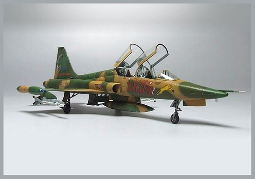 f-5f agressor