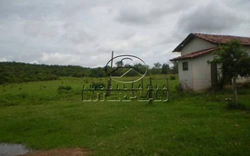fa85046 ,fazenda ,comendador gomes - mg,bairro: rural