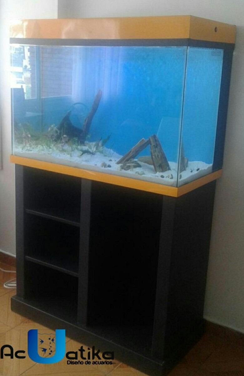 Fabrica de acuarios plantados y muebles en for Disenos de acuarios