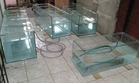 fabricacion de acuarios 40x20x30  en 5mm.