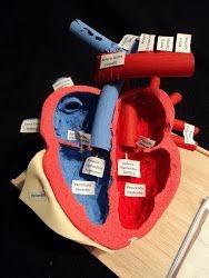 fabricación de maquetas escolares y arquitectónicas