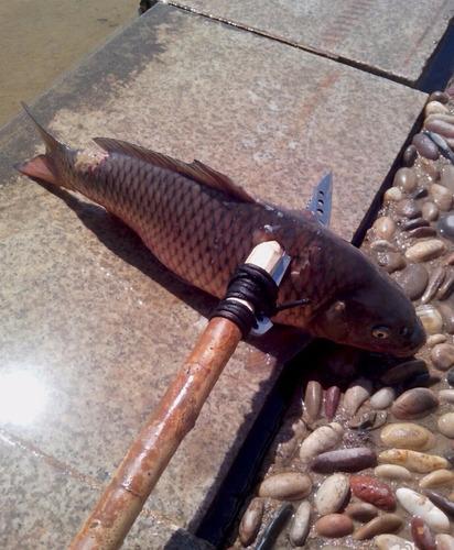 faca arpão de pesca
