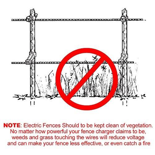 familia paso-en la cerca eléctrica de la red para las ove...
