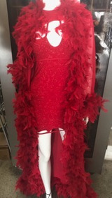 e0dcad066 Fantasia Dama Da Noite Luxo Vermelha-1001 Coisas