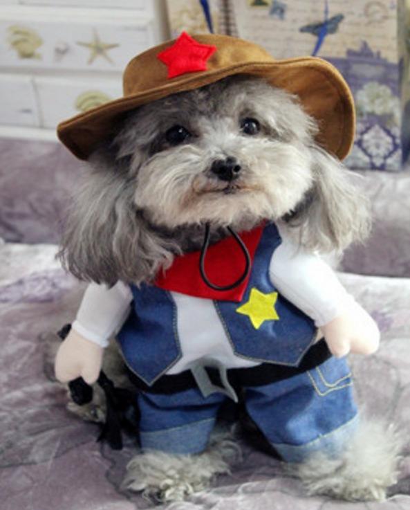 5e1359d4a20fb2 Fantasia De Xerife Para Cachorro E Gato Tm Gg Ver Medidas