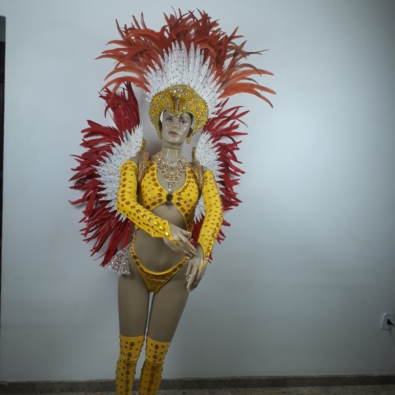 Fantasia Rainha Passista E Musa Carnaval E Escola De Samba R