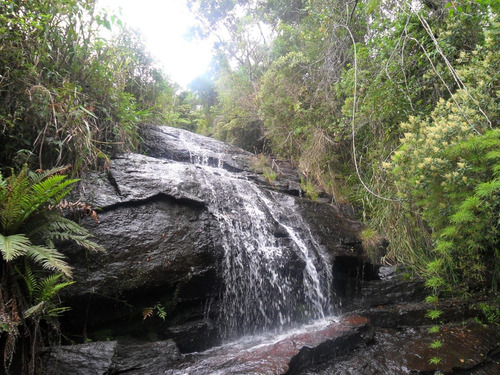 fantástico sítio com cachoeiras, 15 ha, serra dos garcias