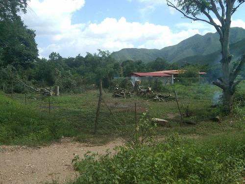 farfan: mtto de áreas verdes y servicios domésticos.....