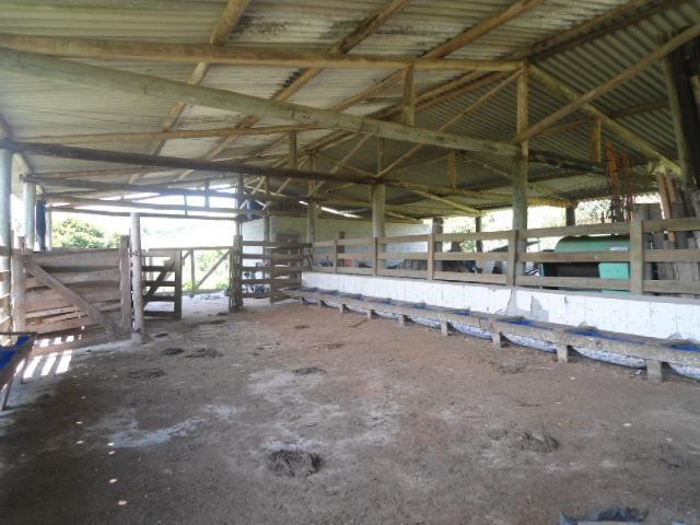 fazenda 220 alqueires com porteira fechada, px da rod tamoio