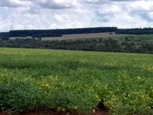 fazenda 36 alqueires em soja