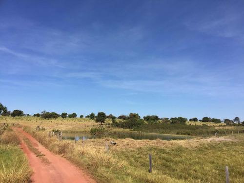 fazenda 8.000 hectares município general carneiro
