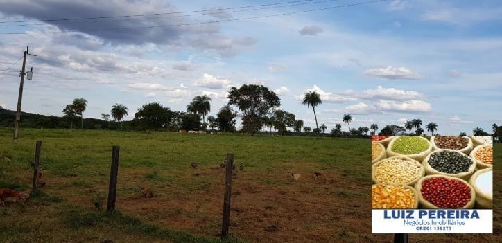 fazenda a venda de 150 alqueirões  em gurupi-to (dupla aptidão) - 697