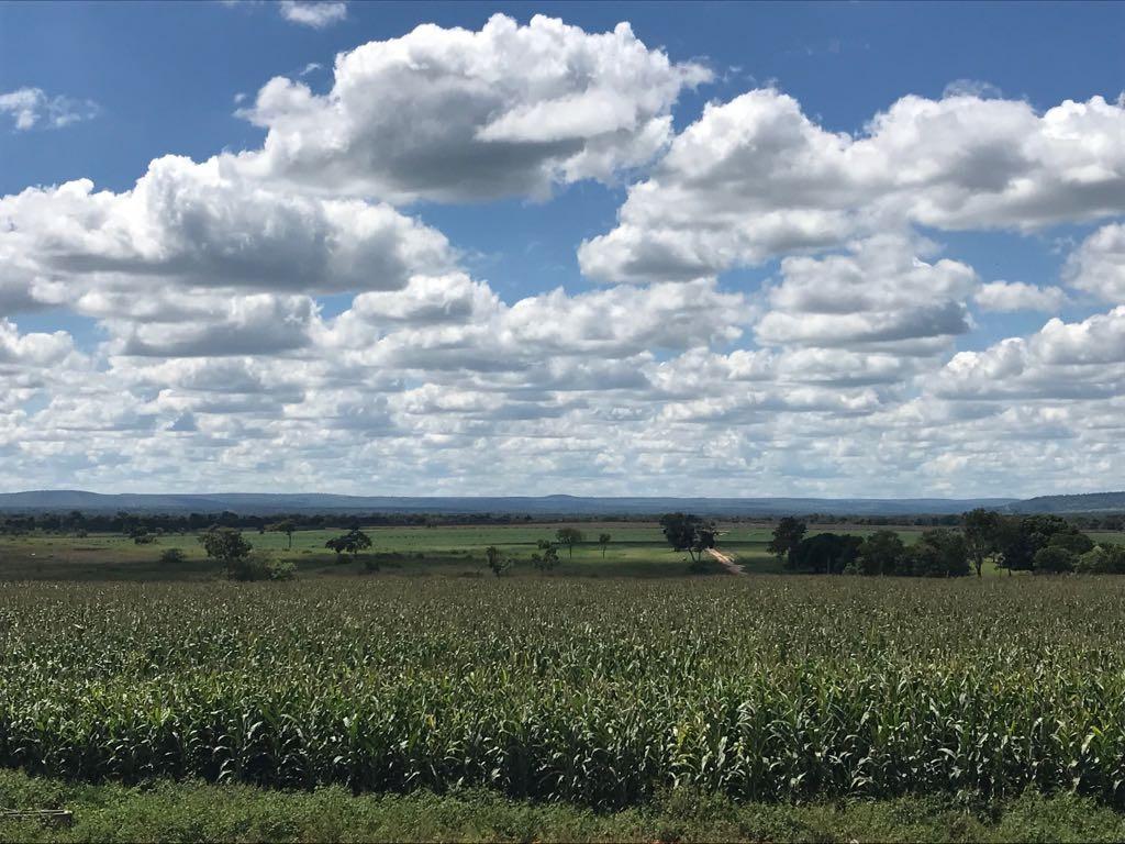fazenda a venda de 2033 hectares em jequitai-mg ( cod 6003)