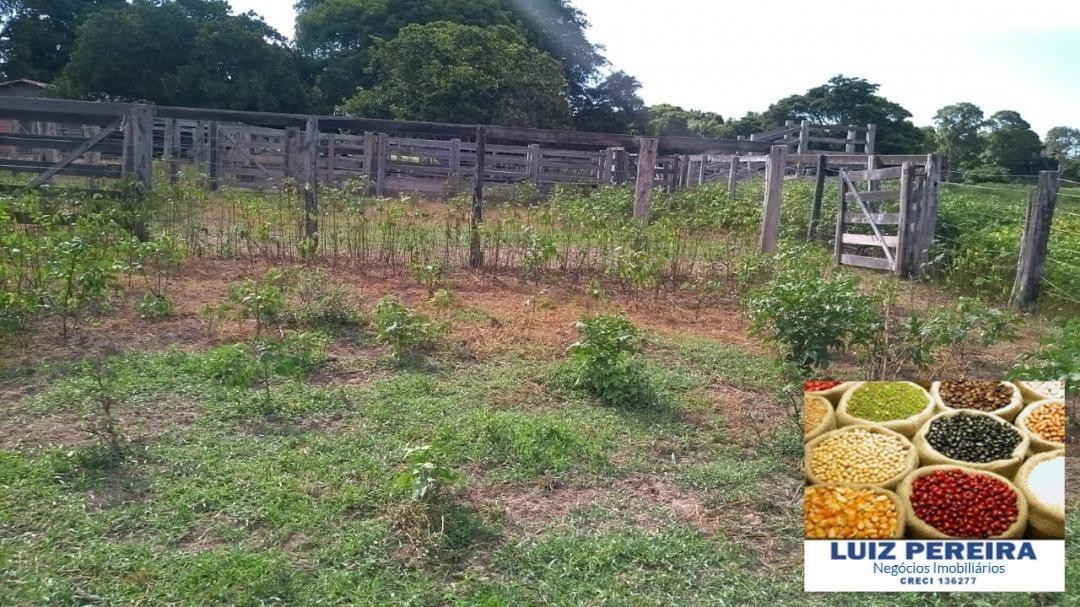 fazenda a venda de 90 alqueirões em formoso do araguaia - to (pecuária) - 1299