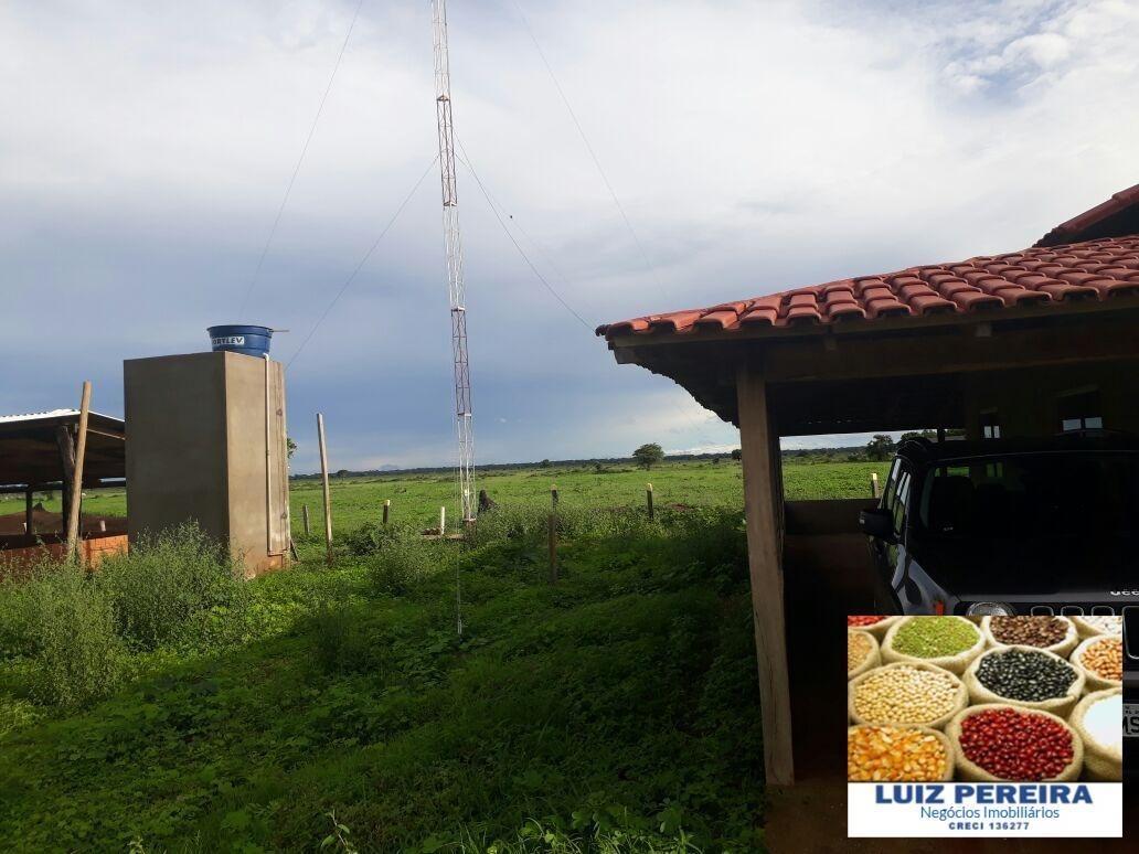 fazenda a venda de projeto de lavoura em f. do araguaia- to (dupla aptidão) - 1326