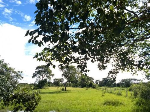 fazenda a venda em aquidauana - ms (pecuária) - 868
