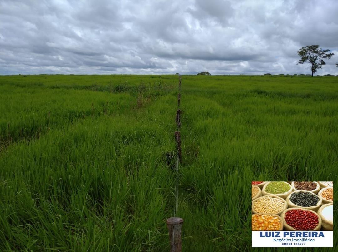 fazenda a venda em bataguassu - ms - de 198,44 hectares (pecuária) - 1389
