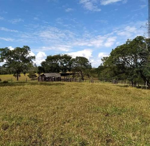 fazenda a venda em camapuã -ms (pecuária) - 812