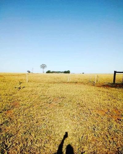 fazenda a venda em campo grande - ms - 1171