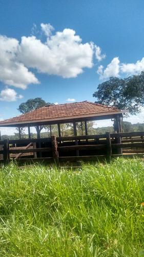fazenda a venda em campo grande - ms (pecuária) - 792