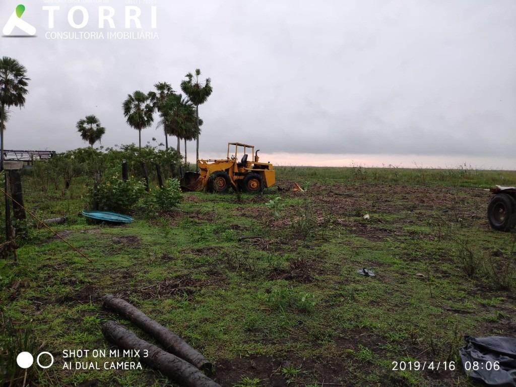 fazenda a venda em corumbá - fa00019 - 34618969