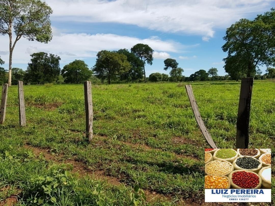 fazenda a venda em corumbá - ms - de 1.689 hectares (dupla aptidão) - 1313