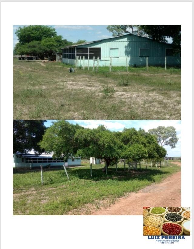 fazenda a venda em corumbá - ms - de 5.564 hectares (pecuária) - 1353