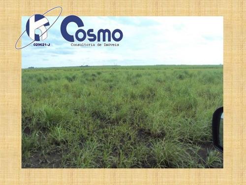 fazenda, a venda, em corumbá - ms - fa00039 - 32940624