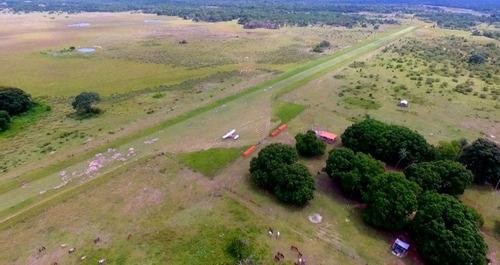 fazenda a venda em corumbá, pantanal - ms (pecuária) - 859