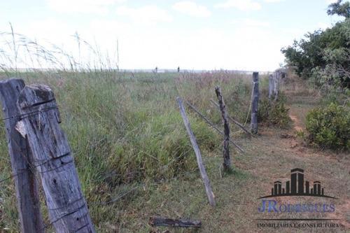 fazenda a venda em cristalina com 79 hectares - goiás - 364
