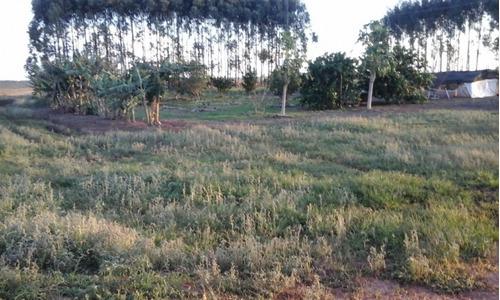 fazenda a venda em dourados - ms (agricultura) - 838
