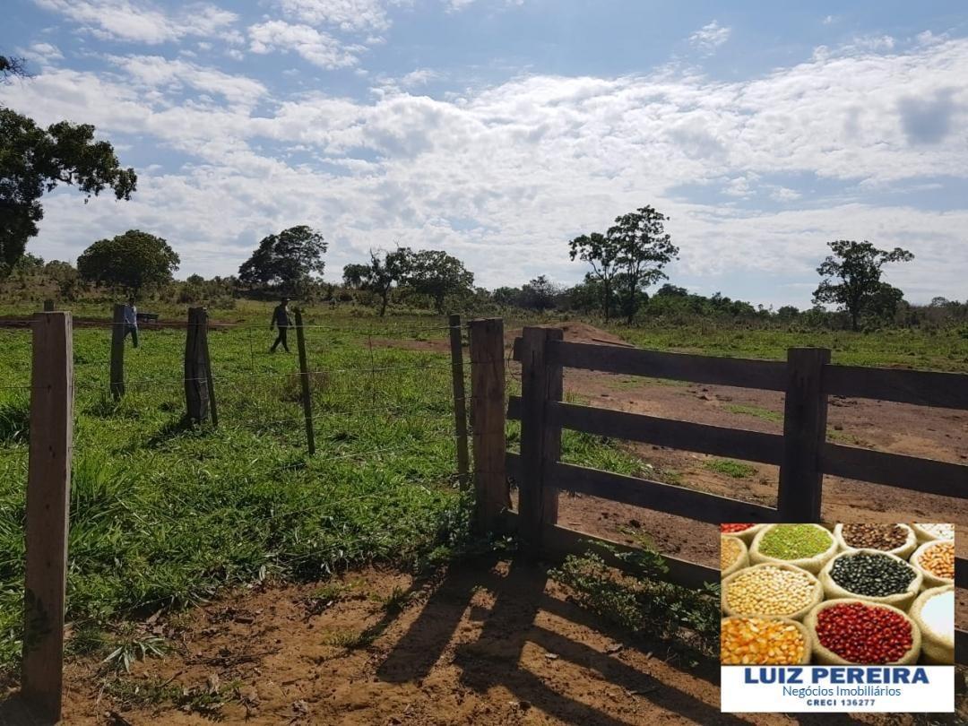 fazenda a venda em dueré - to -  de 106 alqueirões (pecuária) - 1248