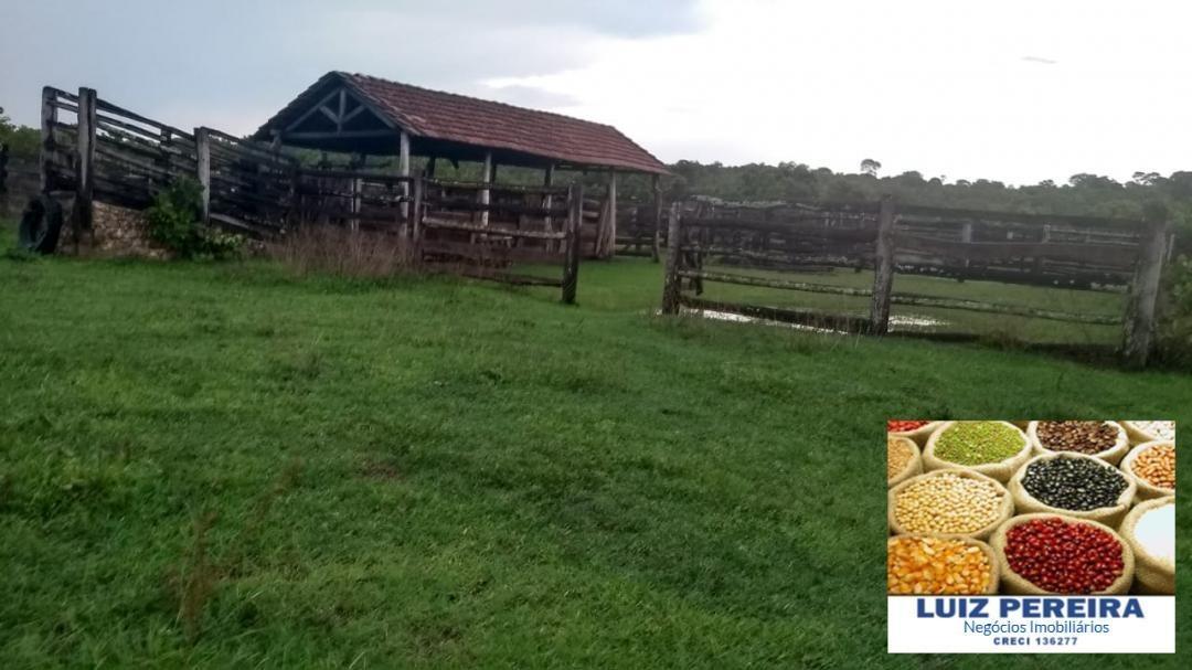 fazenda a venda em dueré -  to - de 220 alqueirões (dupla aptidão) - 1238