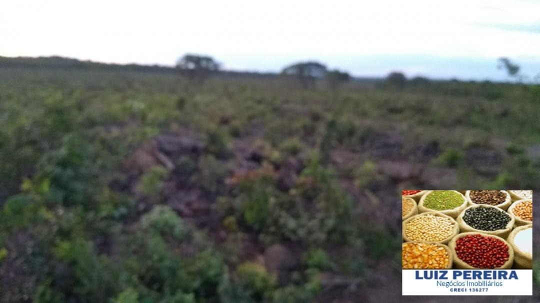 fazenda a venda  em dueré - to para pecuária - de 50 alqueirões - 1251