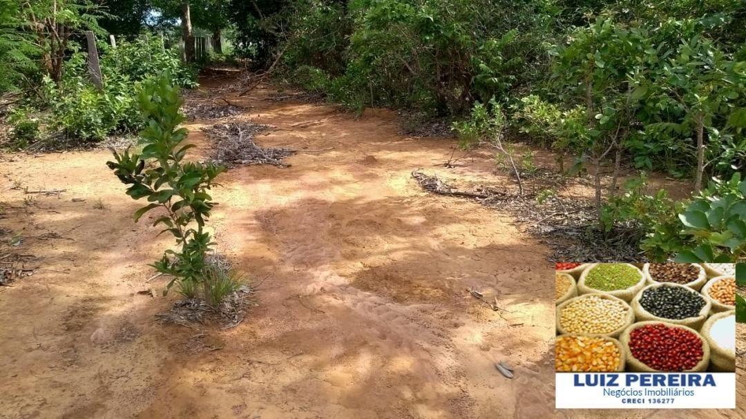 fazenda a venda  em figueirópolis - to - de 180 alqueirões (agricultura) - 1246
