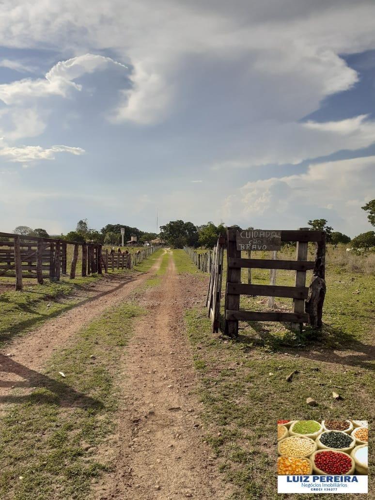 fazenda a venda em figueirópolis - to - de 188 alqueirões  (pecuária) - 1239