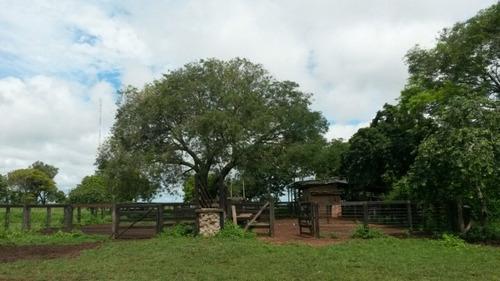 fazenda a venda em figueirópolis -to (dupla aptidão) - 912