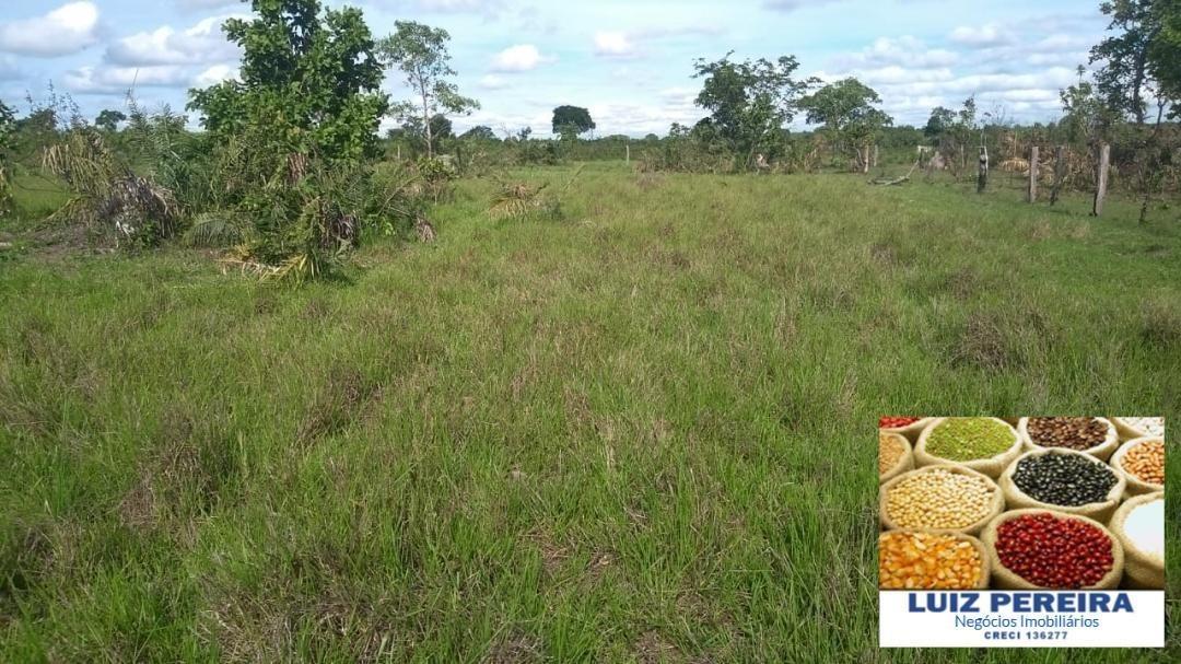 fazenda a venda em formoso do araguaia -to - de 76 alqueirões - 1247