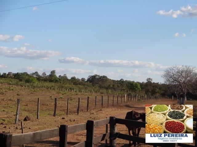 fazenda a venda em formoso do araguaia - to, ( pecuária ) - 470