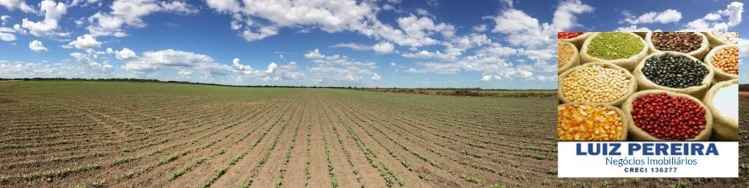 fazenda a venda em lagoa da confusão-to-p/agricultura, projeto irrigação - 1255
