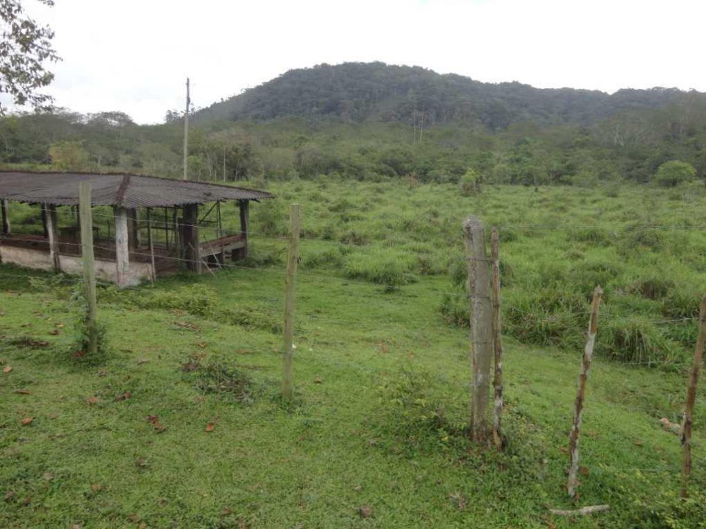 fazenda a venda em miracatu-sp - 7363