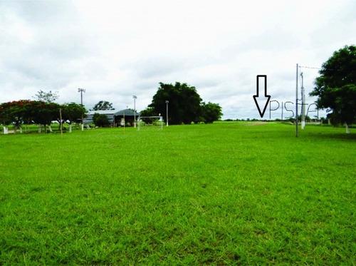 fazenda a venda em ms.  pantanal alto ( pecuária)  - 509