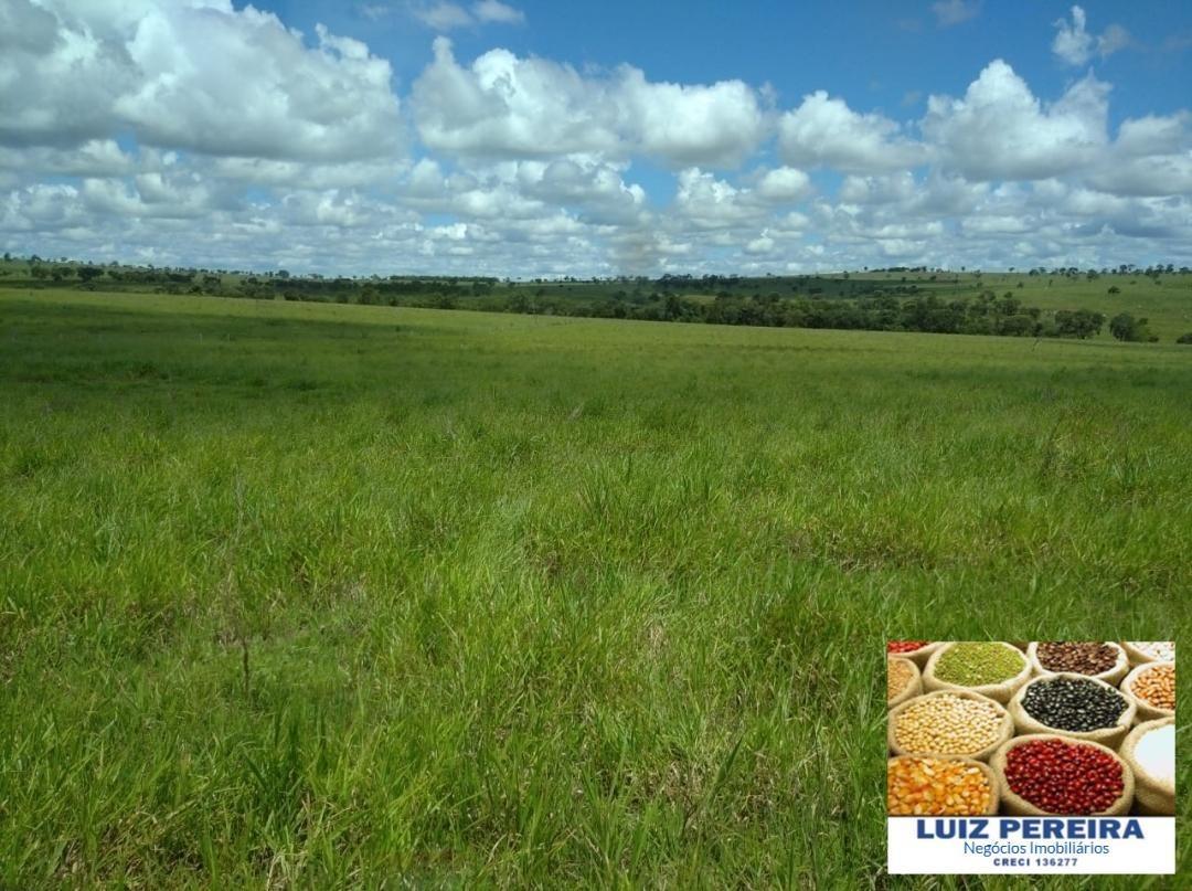 fazenda a venda em nova andradina -ms de 198,44 hectares (dupla aptidão) - 1337