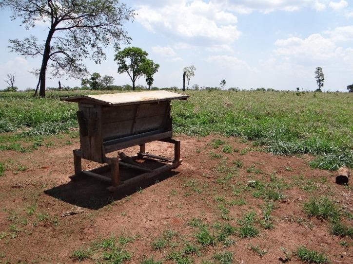 fazenda a venda em ribas d0 rio pardo - ms (pecuária) - 1008