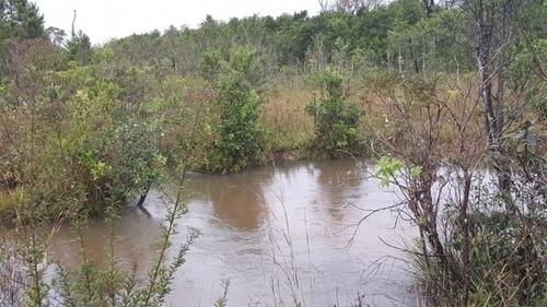 fazenda a venda em ribas do rio pardo-ms (pecuária) - 1175